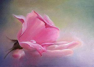 Розовая вуаль  для защиты кожи