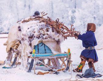 Заготовка рогов, Ямал, Кирилл Уютнов
