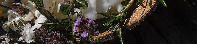 Ядрёна и Пряная сыворотка рецепты от Zima